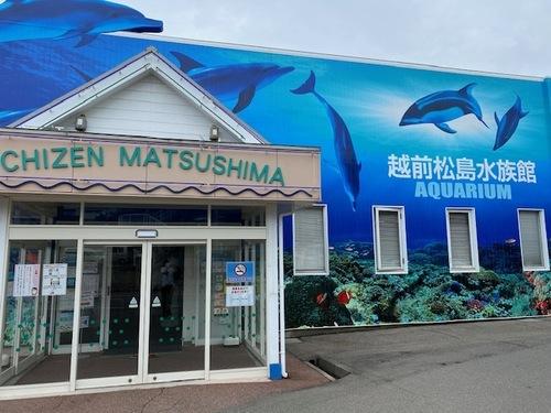 越前松島水族館 (福井県)