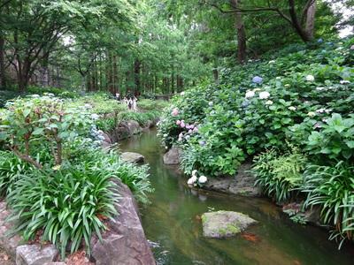 『長居植物園&ランチバイキング』ツアー