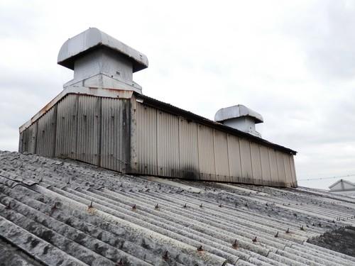 明石市大久保町の工場の中に住みついたハトの追い出しと防除のネット張り工事