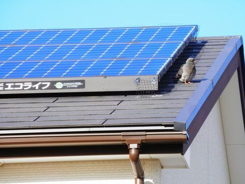 三木市の一戸建て住宅の屋根の太陽光発電システム(ソーラーパネル)防除工事