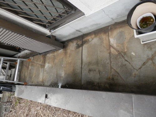 神戸市灘区の4階建て社屋建物のハト防除工事