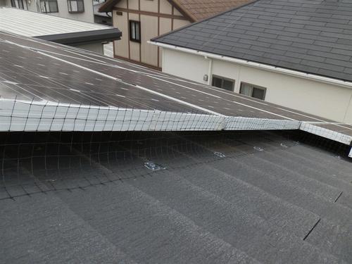 加古川市の一軒家の屋根の上に設置された太陽光パネル内に住みついたハトを追い出してほしいとのご依頼です。