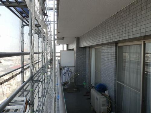 明石市内の会社社宅でのはと対策工事です。