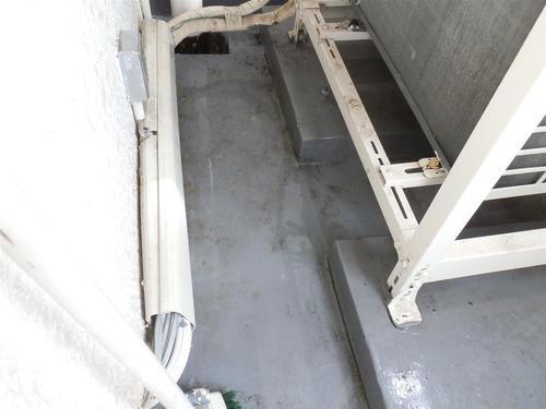 神戸市中央区のマンションでのはと糞掃除と出入口をネットで塞ぐ工事