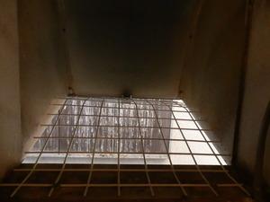 西宮市内の不動産屋さんからのご依頼で民家の2階についている換気扇フードの中にハトが住みついて困っているとのことです。