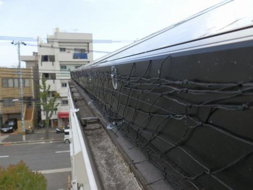 神戸市内の一軒家のソーラーパネルのはと対策工事です。