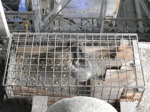 明石市内にある工場のはと対策です。