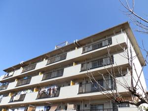播磨町にある集合住宅のはと対策工事です。