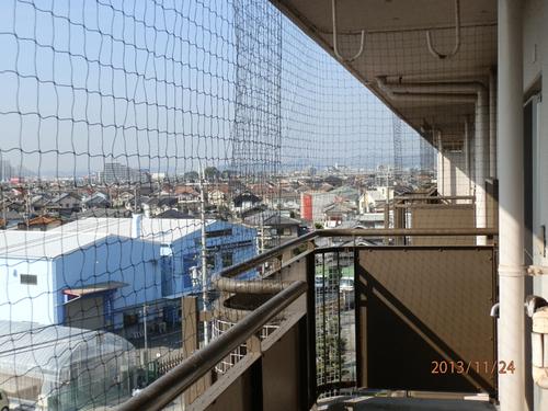 加古川市内にある社宅のはと対策工事です。