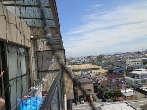 加古川市内にあるマンションでネット張り。