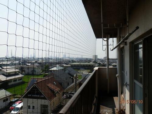 播磨町の集合住宅でのはと対策工事です。
