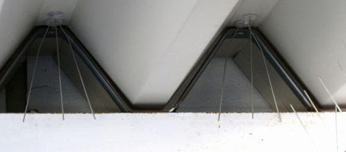 神戸市中央区の会社の工場内の外階段でのはと対策工事です。