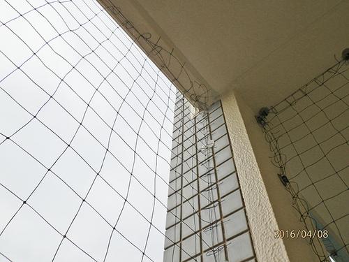 神戸市西区のマンションでのはと対策工事です。