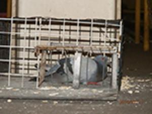 明石市魚住町の会社工場でのはと対策工事です。