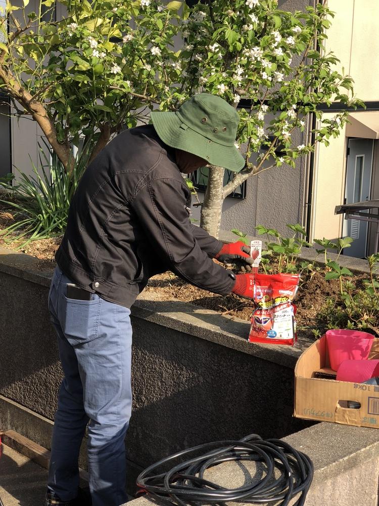 社長、家庭菜園を始める part1