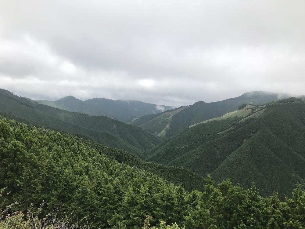 初夏の龍神スカイライン
