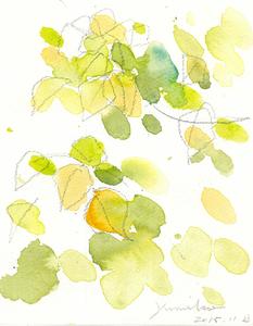 003_ 菜園の秋