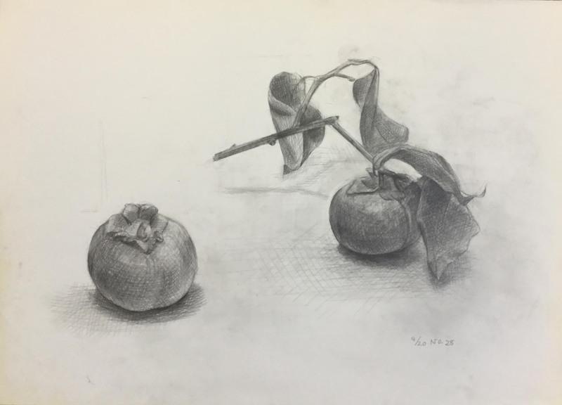 028_鉛筆デッサン 柿 55×40㎝