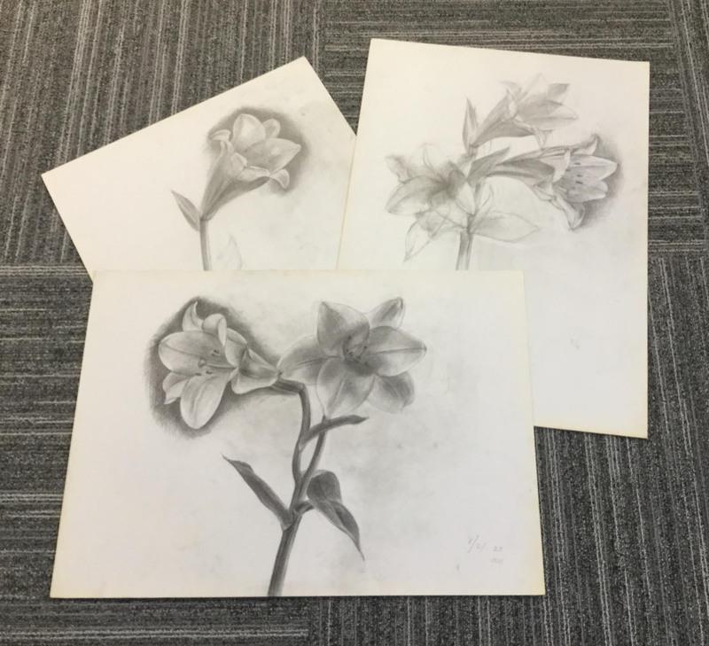 032_鉛筆デッサン(3点) ユリの花 55×40㎝
