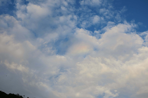 虹のタマゴ